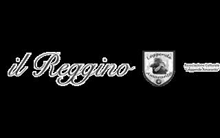 Logo bianco e nero Il Reggino